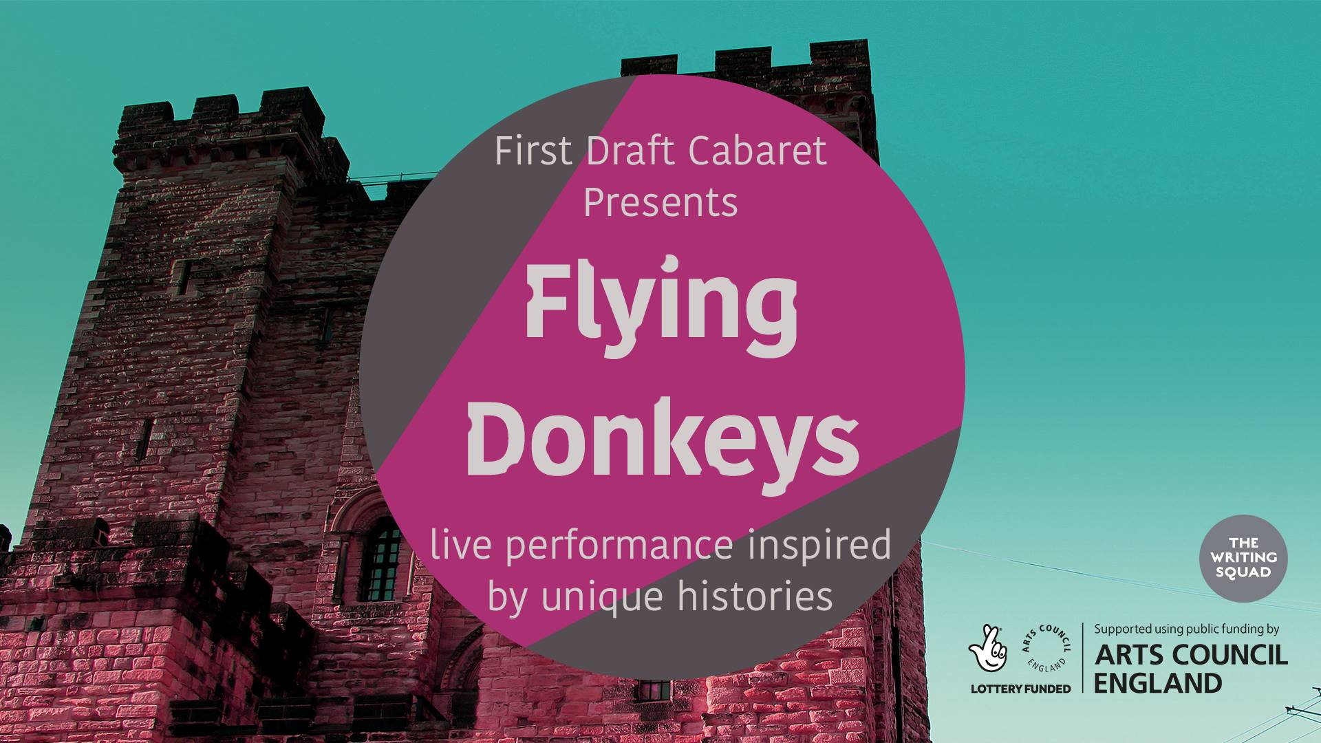 Flying Donkeys poster